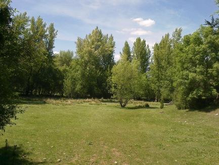 Praderas próximas al río Caslilla, Segovia-06