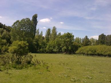 Praderas y bosques del río Caslilla