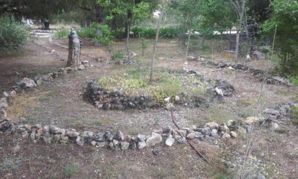 MLC-204-Gardens-08