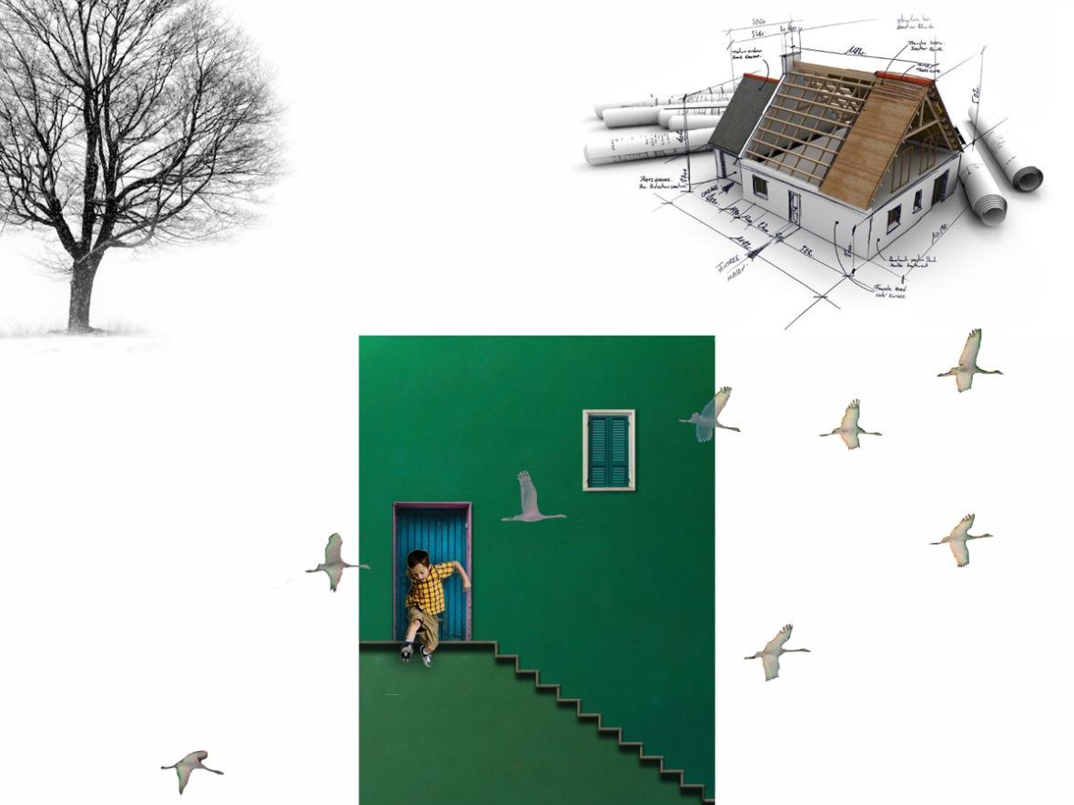 FNH-Arquitectura-y-vida-4b